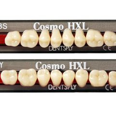 Cosmo HXL – Specification Teeth